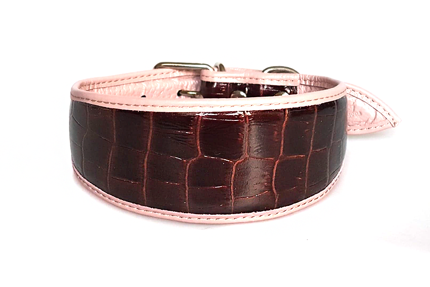 Metallic reptile collar for whippets, greyhounds and other sighthounds