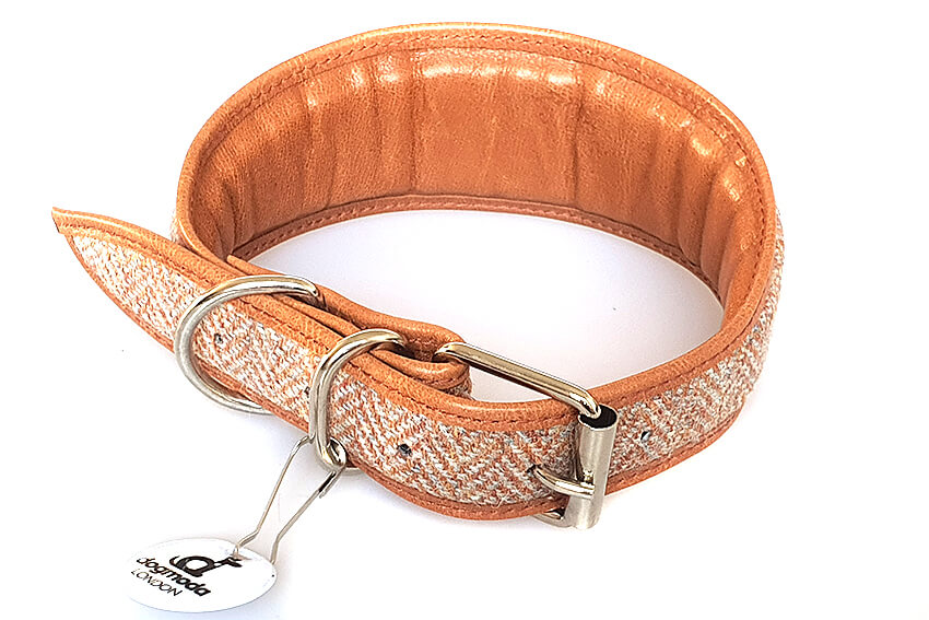 All Dog Moda collars are generously padded and fully lined