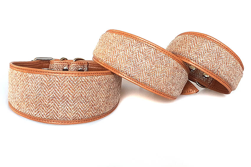 Orange Tarras tweed sighthound collar in sizes: Large, Medium and Small