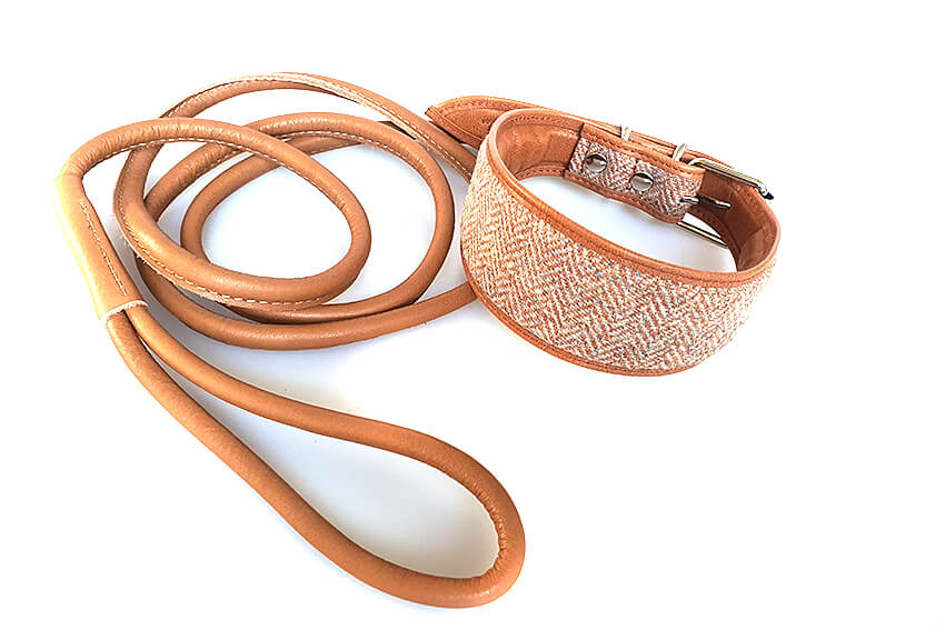 Tarras tweed collar in orange with matching tan rolled leather lead
