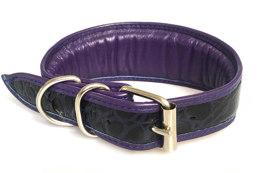 Purple indigo snake collar has matching purple leather lining
