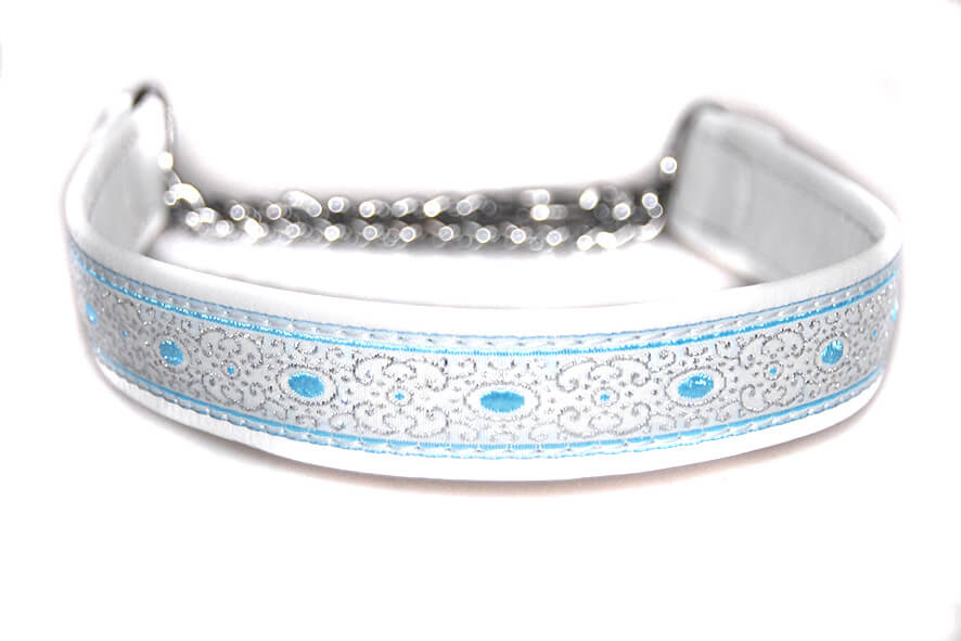 White with blue martingale leather collar