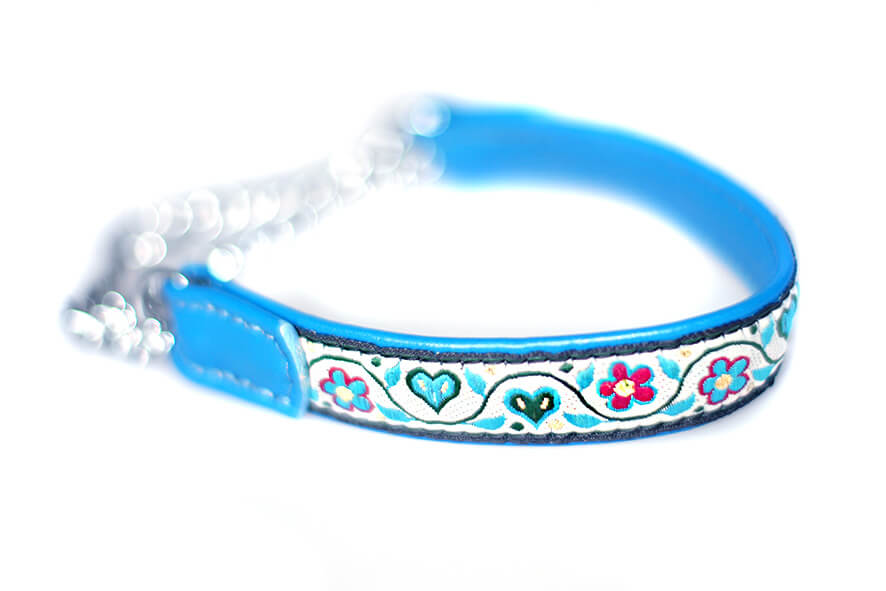 Blue and white martingale collars