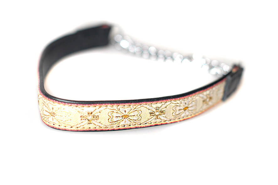 Black and gold martingale collar