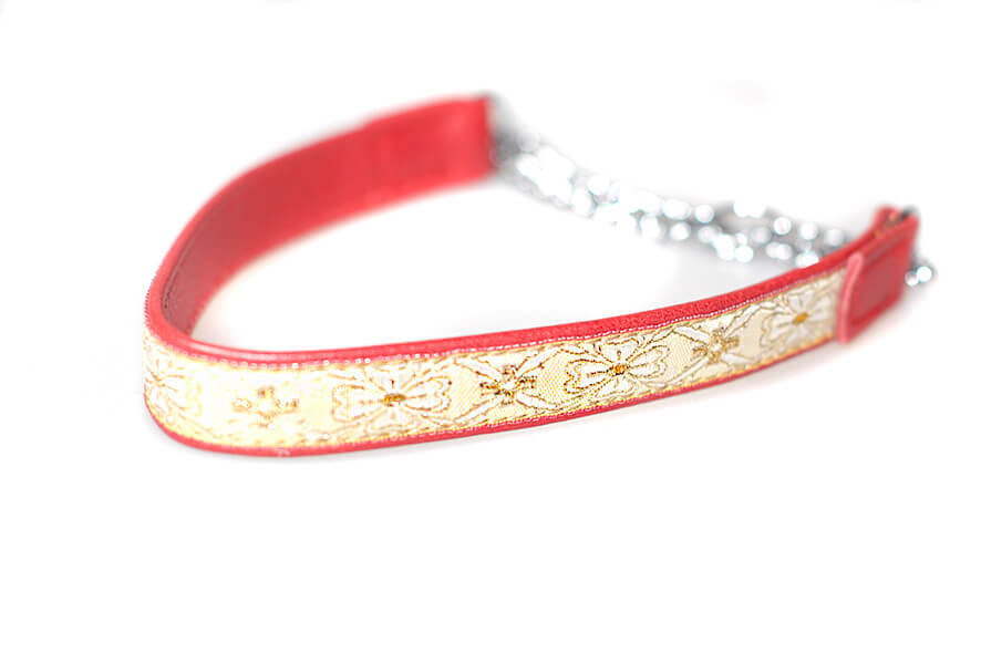 Red leather martingale collar