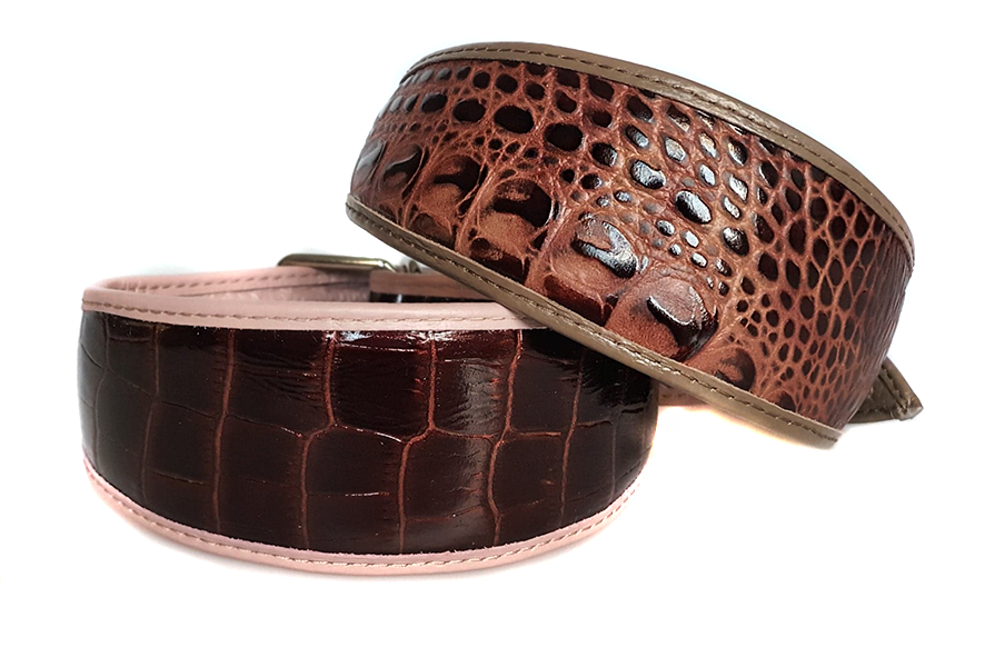 Animal print hound collars are available in a wide range of styles