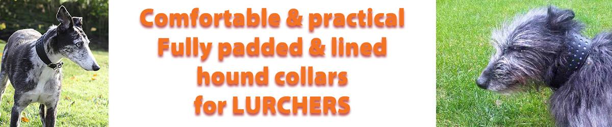 Lurcher collars from Dog Moda