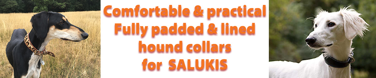 Saluki collars from Dog Moda