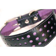 Elegant Violet Purple collar