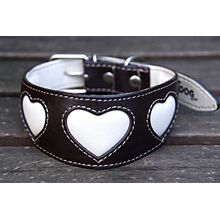 Soft padded brown leather sighthound collar with cream hearts