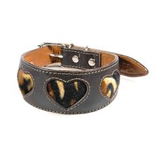 Tiger hearts hound collar - Brown leather hound collar with tiger hearts