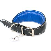 Blue hearts collar is available in 5 sizes