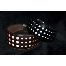 Night safety reflective dog collars in low visibility conditions