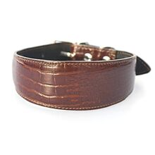 Amazonian alligator hound collar - Dark brown crocodile leather collar