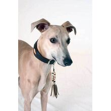 Whippet collar with matching tassel