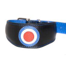 Celebrating RAF centenary with hound collar