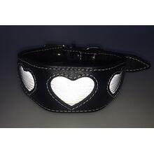 Silver reflective hearts hound collar in flashlight