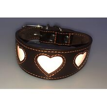 Orange reflective hearts hound collar in flashlight