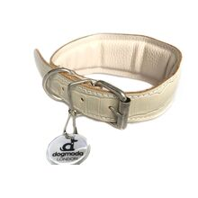 White reptile leather padded Whippet collar - fully lined and padded sighthound leather collar