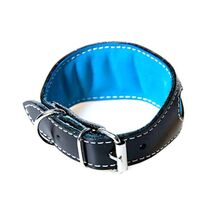 Soft leather padding on all out Whippet puppy collars