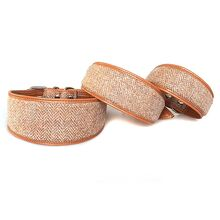 Orange Tarras tweed sighthound collar in sizes: Large, Medium and Small