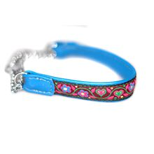 Blue and pink martingale collar