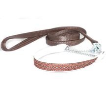 Brown double stitched lead with ribbon collar