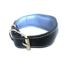 Full padding and loaning on all Dog Moda collars