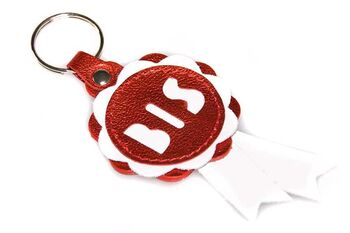 Best in Show rosette key ring / key chain