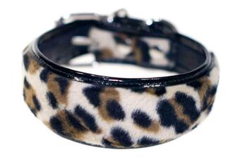 Black leopard hound collar