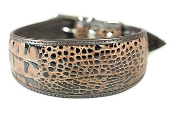 Brown python leather hound collar
