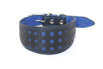 Elegant sighthound collar in blue